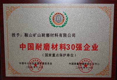 中国耐磨材料30强企业