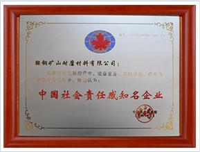 中国社会责任感知名企业