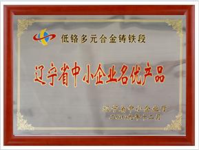 辽宁省中小企业名优产品